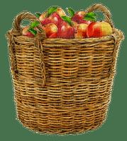autumn apples fruits  basket_automne pommes_BlueDREAM 70
