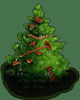 pine tree christmas sapin noel arbre