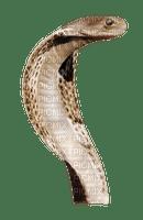 Kaz_Creations Snake