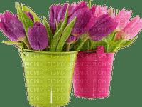 Tulipes.Tulips.Fleur.Flowers.pot.vase.Victoriabea