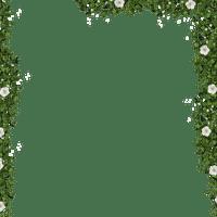 cadre feuillage fleur  leaves  frame