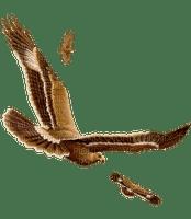 oiseau (
