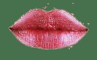 lips-Nitsa 1