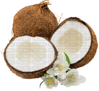 coconut kokosnuss beach plage strand sea deco tube fruit noix de coco summer ete sommer fleur