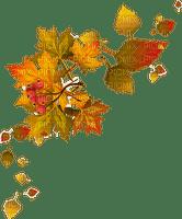 autumn leaves deco automne  feuilles