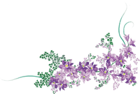 soave flowers deco border branch purple