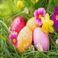 spring printemps frühling primavera весна wiosna  fond background   easter ostern Pâques paques garden jardin   paysage  landscape  egg eggs eier œufs grass herbe flower fleur