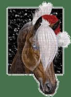 cheval noel