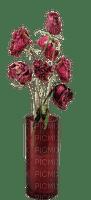 munot - vase - rosen blumen - roses flowers - roses fleurs
