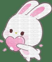 adorable lapin rabbit bunny cute mignon kawaii
