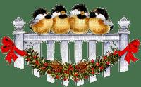 CHRISTMAS BIRDS oiseaux noel