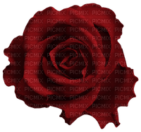 MINOU-RED-ROSE-FLOWER