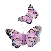 butterfly papillon  deco insect spring  tube printemps