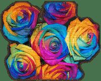rose multicolore.Cheyenne63