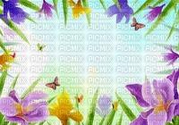 multicolore image encre la nature bon anniversaire fleurs papillon printemps edited by me