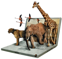 Africa animals bp