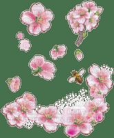 spring printemps frühling primavera весна wiosna tube deco  flower fleur blossom bloom blüte fleurs blumen branch zweig