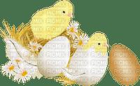 easter ostern Pâques paques  deco tube  eggs eier œufs egg küken chick poussin duck ente canard flower fleur
