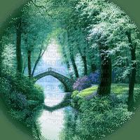 paysage foret forest