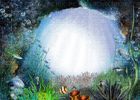 multicolore image encre couleur effet cadre bon anniversaire poisson edited by me