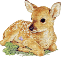 dolceluna deer baby