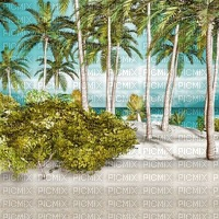 beach plage strand island insel palm palmen sand sea mer meer ocean water eau   summer ete paysage landscape fond background