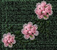 Marcia  flores fleurs flowers