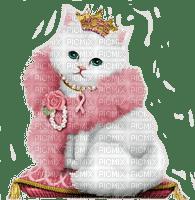 cat queen reine de chat 👸🤴