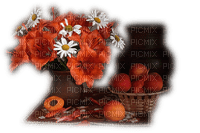 orange flowers-fruits-arancione-fiore-fruttaOrange-fleur-fruit--orange-blommor-frukt-minou