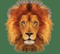 lion felins