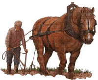 man mann homme tube image human people spring horse cheval animal farmer farm