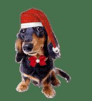 Christmas Dog.Chien.Noël.Navidad.Perro.Santa Claus.Victoriabea