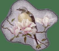 bird pink flower oiseaux  fleur pink