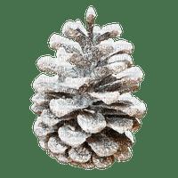 Pine.Cone.Winter.Snow.Plants.Victoriabea
