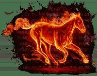 horse fire cheval feu