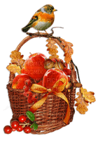 the autumn bird fruit basket_automne volaille