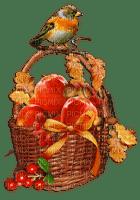 the autumn bird fruit basket_automne volaille