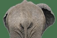 éléphant elephant elefant africa deco tube animal afrika dschungel