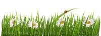 Kaz_Creations Flowers Grass