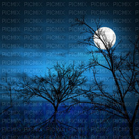 Full moon night background
