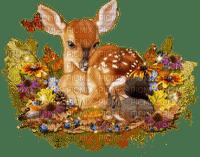 autumn deer automne cherf