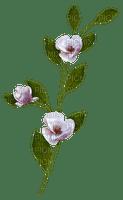 flower fleur branch blossoms  spring printemps  deco    summer ete  tube  sommer  garden jardin garten