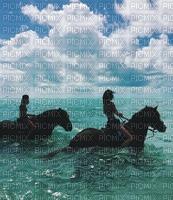 Caballos en mar