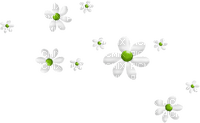Kaz_Creations Deco Flowers Green White