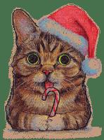 Lil Bub Santa