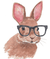 Rabbit, Rabbits, Bunny, Bunnies, Animal, Animals,  Easter - Jitter.Bug.Girl