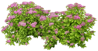 Kaz_Creations Deco Grass Garden Flowers