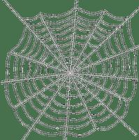 spider web bp