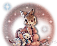 bunny hare lapin