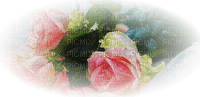 pink rose roses pink deco